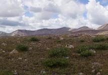 High Uintas Wilderness Backpacking August 2015 020