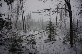 pigeon river winter camping 9