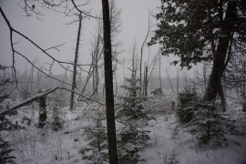 pigeon river winter camping 11