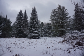 pigeon river winter camping 25