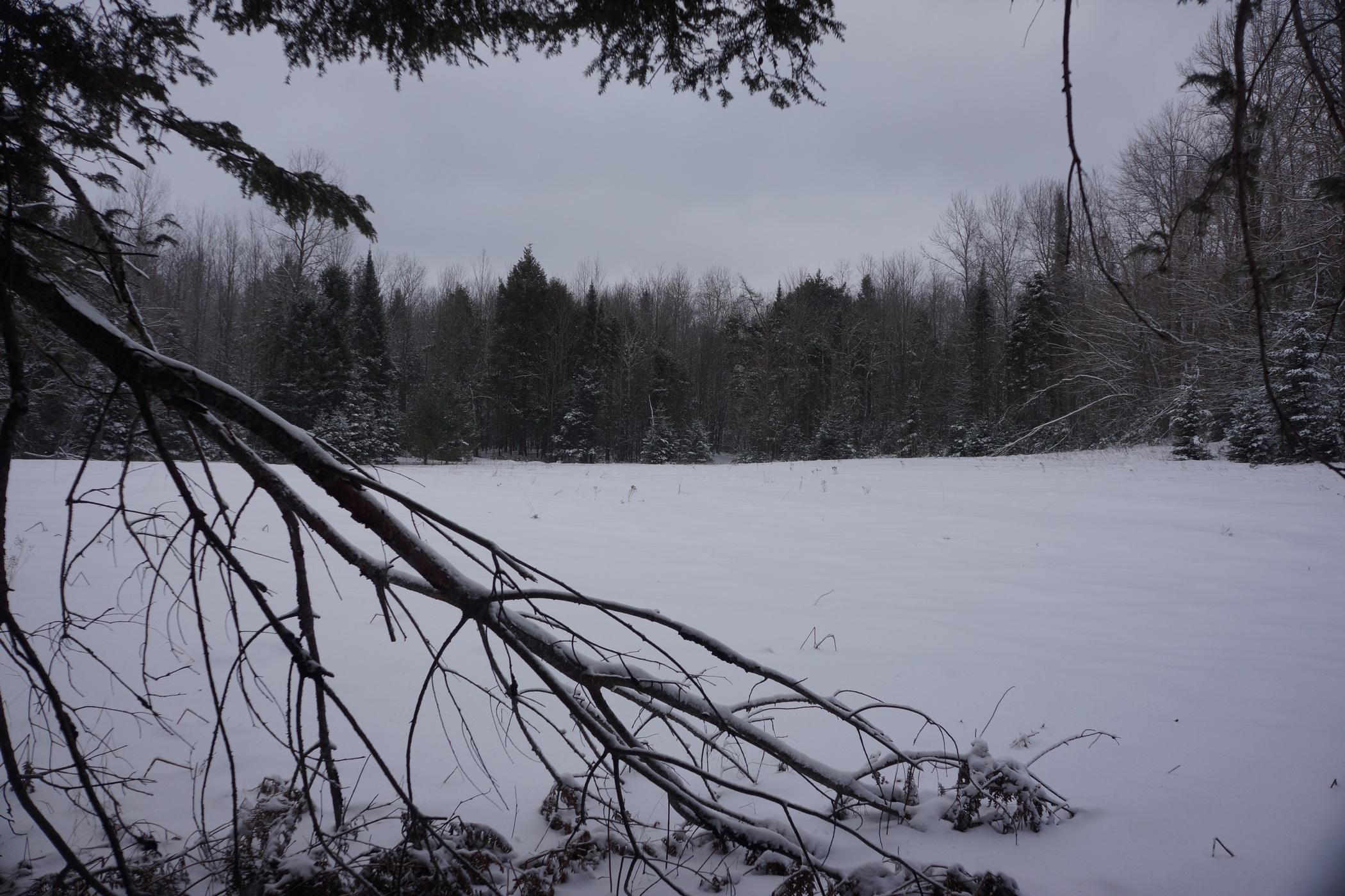 pigeon river winter camping 20