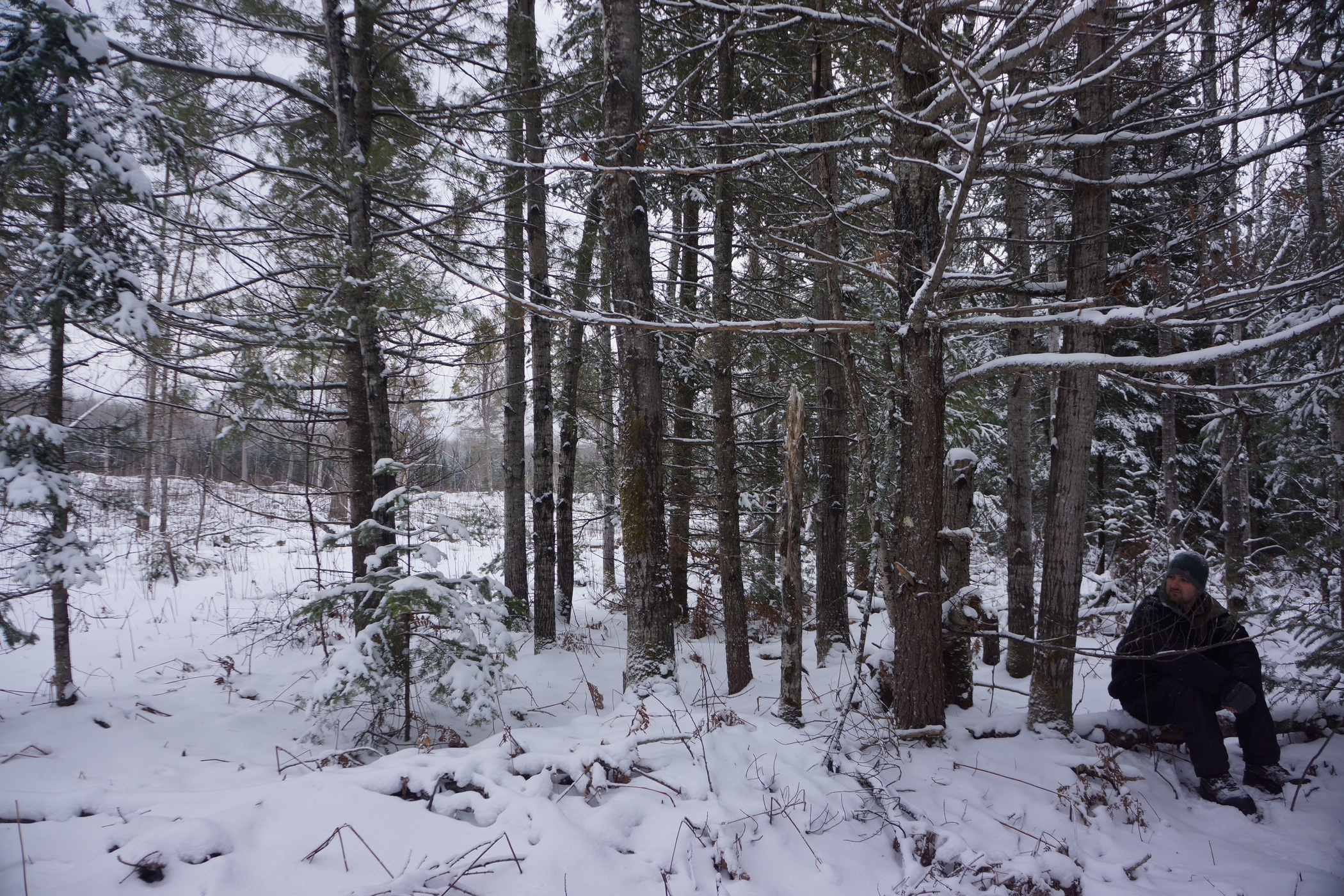 pigeon river winter camping 22