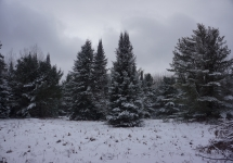 pigeon river winter camping 24